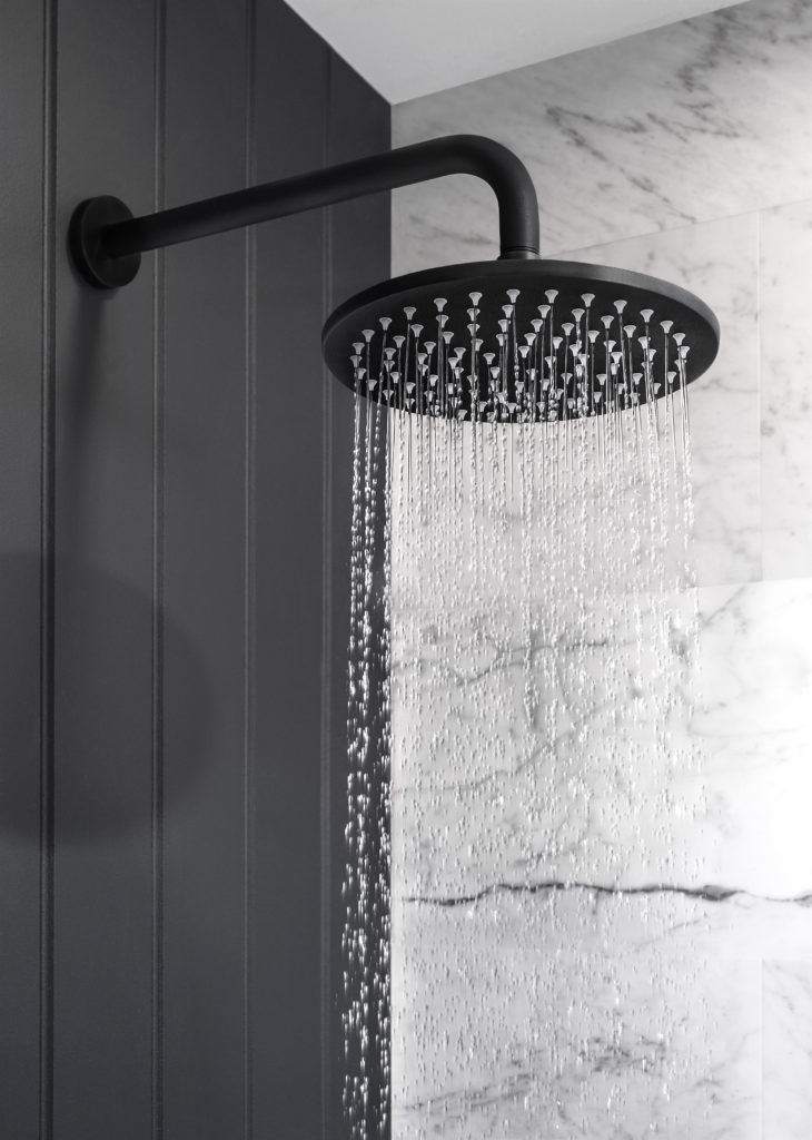 Matt Black Shower