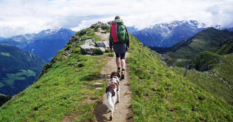 8 great Walking Apps